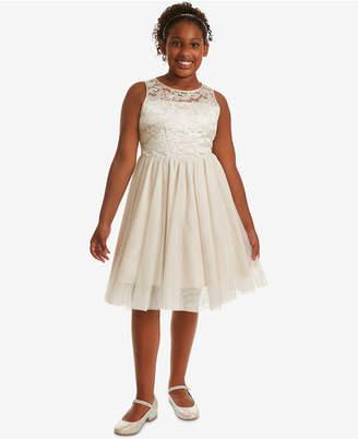 Rare Editions Big Girls Plus Embroidered Mesh Dress