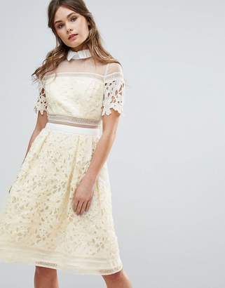 Chi Chi London Premium Lace Paneled Dress With Contrast Collar