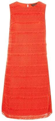 Dorothy Perkins Womens Coral Fringed Lace Shift Dress