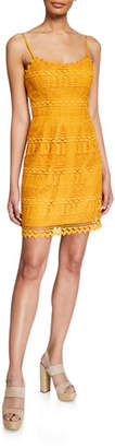 Dress the Population Gwen Spaghetti-Strap Mini Lace Dress