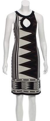 Diane von Furstenberg Sleeveless Printed Knee-Length Dress
