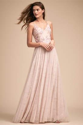 Adrianna Papell Cluny Dress