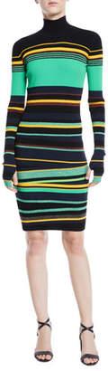 Diane von Furstenberg Finn Striped Metallic Long-Sleeve Turtleneck Dress