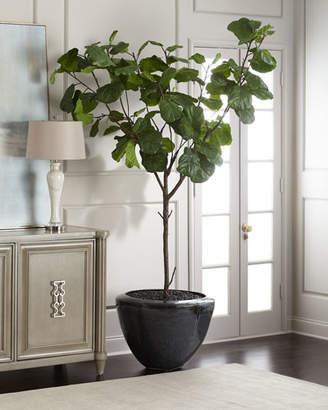 John-Richard Collection Garden Fiddle Leaf Fig Tree
