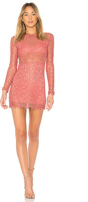 NBD Delilah Dress