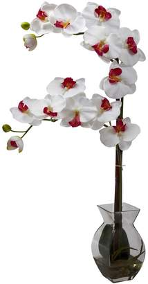 Nearly Natural nearly natural Phalaenopsis Orchid Floral Arrangement