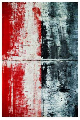 "Trademark Global Jean Brya X-ray Canvas Art - 27"" x 33.5"""