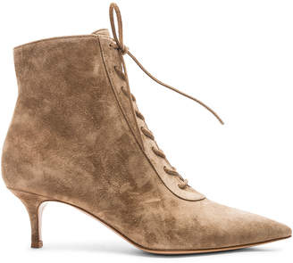 Gianvito Rossi Suede Kitten Heel Lace Up Ankle Boots in Camel | FWRD