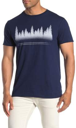 Fifth Sun Bear Scene Short Sleeve Front Graphic T-Shirt