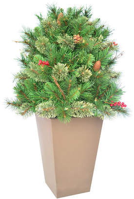 """clear National Tree Company 36"""" Glistening Pine Porch Bush with Pine Cones, Red Berries, Twigs & 70 Lights"""