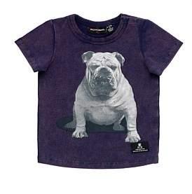Rock Your Baby Little Bruiser Short Sleeve Tshirt (3Months-2Years)