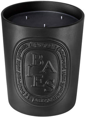 Diptyque Baies Candle 600g