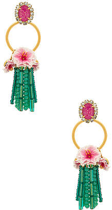 Elizabeth Cole Bastian Earrings