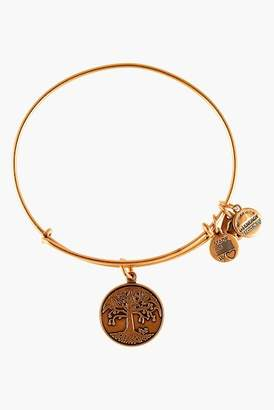 Alex and Ani Charm Expandable Wire Bracelet