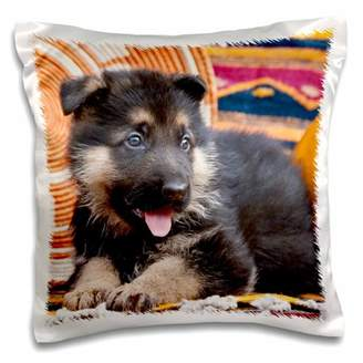 3dRose German Shepherd puppy dog on blankets - NA02 ZMU0125 - Zandria Muench Beraldo, Pillow Case, 16 by 16-inch
