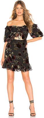 Saylor Devyn Dress