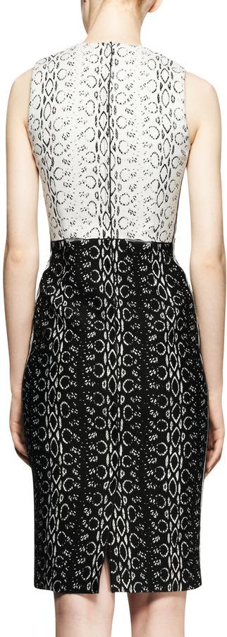 Reed Krakoff Sleeveless Paneled Viper-Print Dress