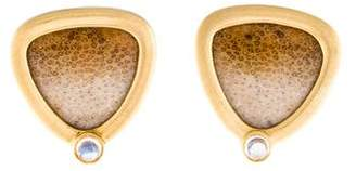 14K Fossilized Palm Wood & Moonstone Clip-On Earrings