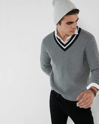 Express V-Neck Cricket Sweater