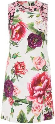 Dolce & Gabbana Peony Print Dress