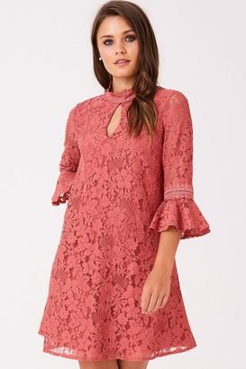 Little Mistress Helene Terracotta Lace Shift Dress