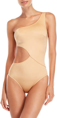 Solid & Striped Metallic Claudia One-Piece Swimsuit