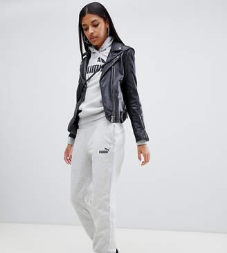 Puma Essentials Gray Sweat Pants