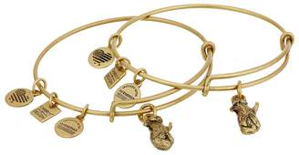Alex and Ani Charity by Design Side by Side Set of 2 Expandable Wire Bangles Bracelet