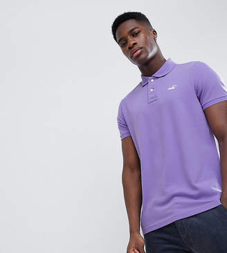 Hollister solid core seagull logo polo contrast placket in purple Exclusive at ASOS