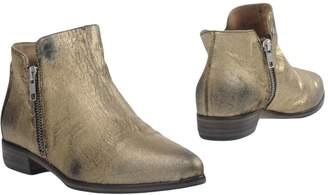 Alexander Hotto Ankle boots - Item 11385746CR