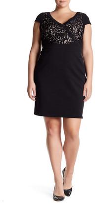 Adrianna Papell Short Sleeve Lace Dress (Regular, Petite, & Plus Size) $180 thestylecure.com