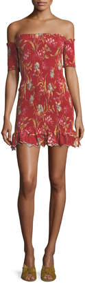 Zimmermann Corsair Shirred Flutter Floral-Print Dress