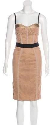 Dolce & Gabbana Mesh Bodycon Dress