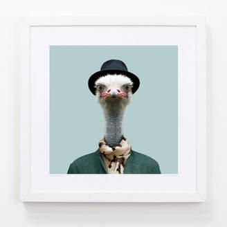 Evermade Ostrich Art Print