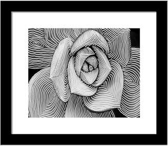 PTM Images Rose Sketch Wall Art - 14 x 14
