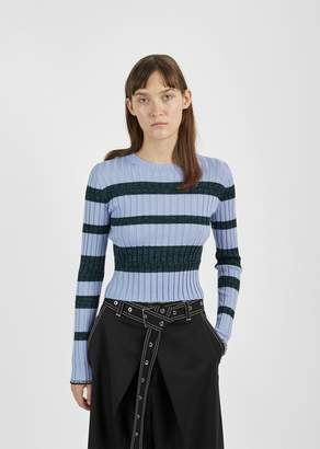 Proenza Schouler Ultrafine Striped Rib Crewneck Pale Blue/Deep Pine Multi