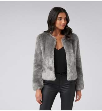 Ever New Angel Cropped Fur Coat