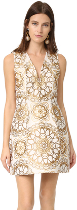 alice + olivia Pacey V Neck Lantern Dress $550 thestylecure.com