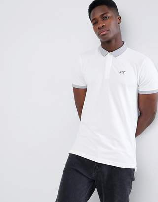 Hollister Contrast Detail Collar Seagull Logo Pique Polo in White