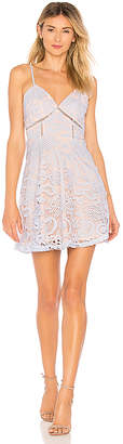superdown Maci Lace Skater Dress