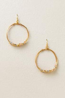 francesca's Ansley Round Earrings - Champagne