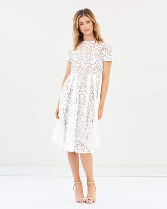 Cooper St Snapdragon Fit and Flare Lace Dress