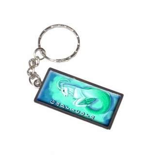 Generic Capricorn Sea Goat Zodiac Astrological Sign Astrology Keychain Key Chain Ring