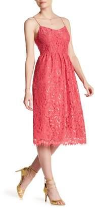 Cynthia Steffe CeCe by Aurora Floral Lace Dress
