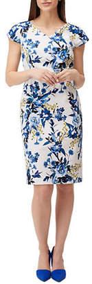 Precis Petite Botanical Print Sheath Dress