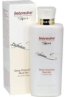 Avani Intensive Spa Perfection Deep Cleansing Mud Gel