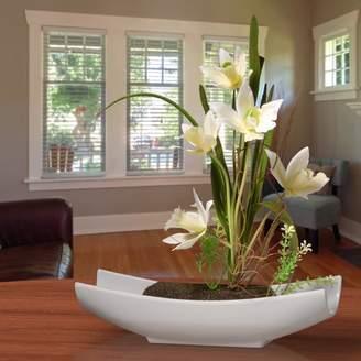 Orren Ellis Orchid Floral Arrangement in White Planter