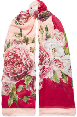 Dolce & Gabbana Floral-print Modal And Cashmere-blend Scarf - Pink