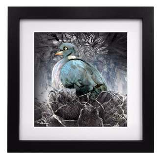 Coleman Louise Limited Edition Nesting Pigeon Art Print