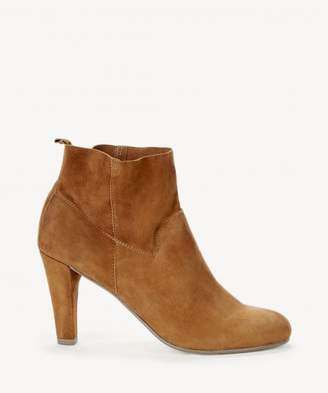 Sole Society Laurel Dressy Bootie